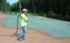 Deer Creek did this hydroseeding in Ham Lake