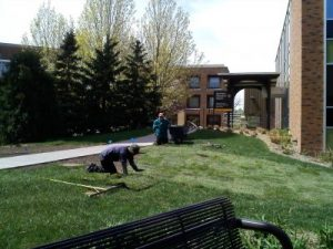 We did this sod installation project for a happy neighbor