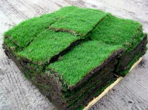 We did this sod delivery on time - Deer Creek Turf