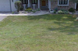 Working on this home doing yard grading in Minnetonka was really fun! - Deer Creek Turf